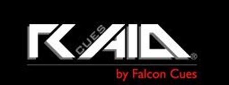 Image de la catégorie RAID